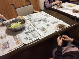 山菜が美味しい季節です。ツワを採って来ました!