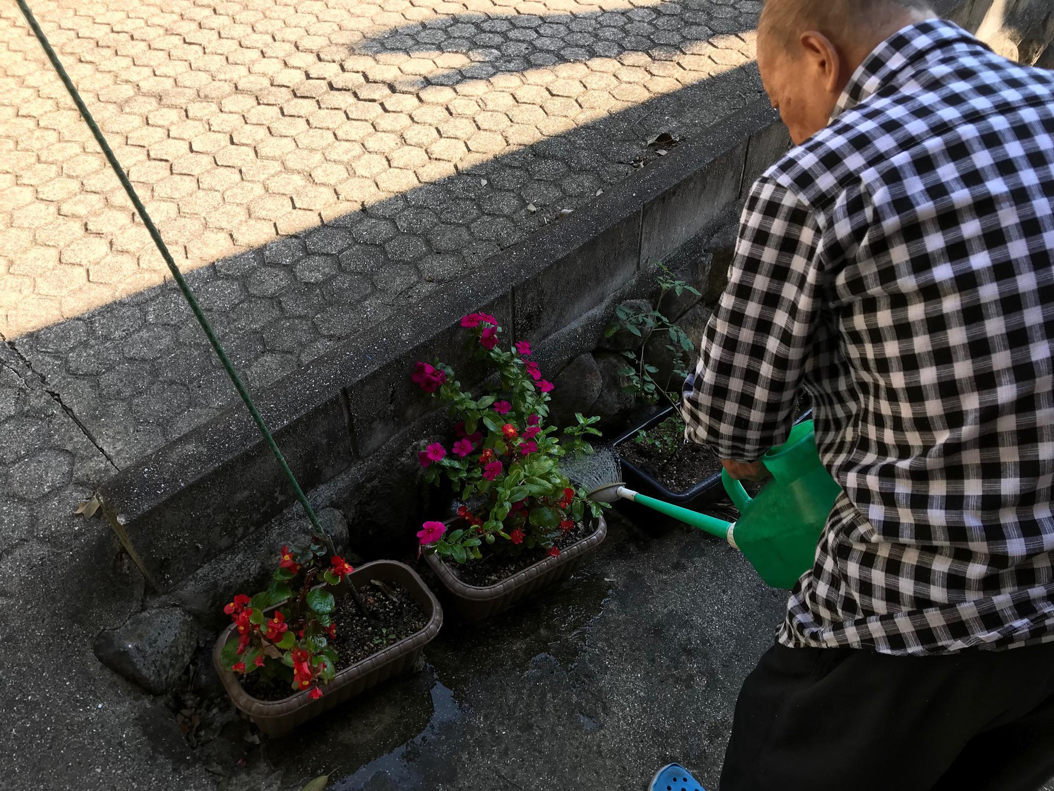 お花に水やり